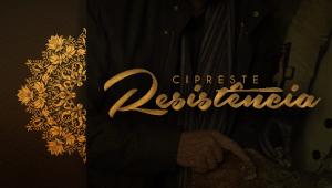 Cipreste - Resistência